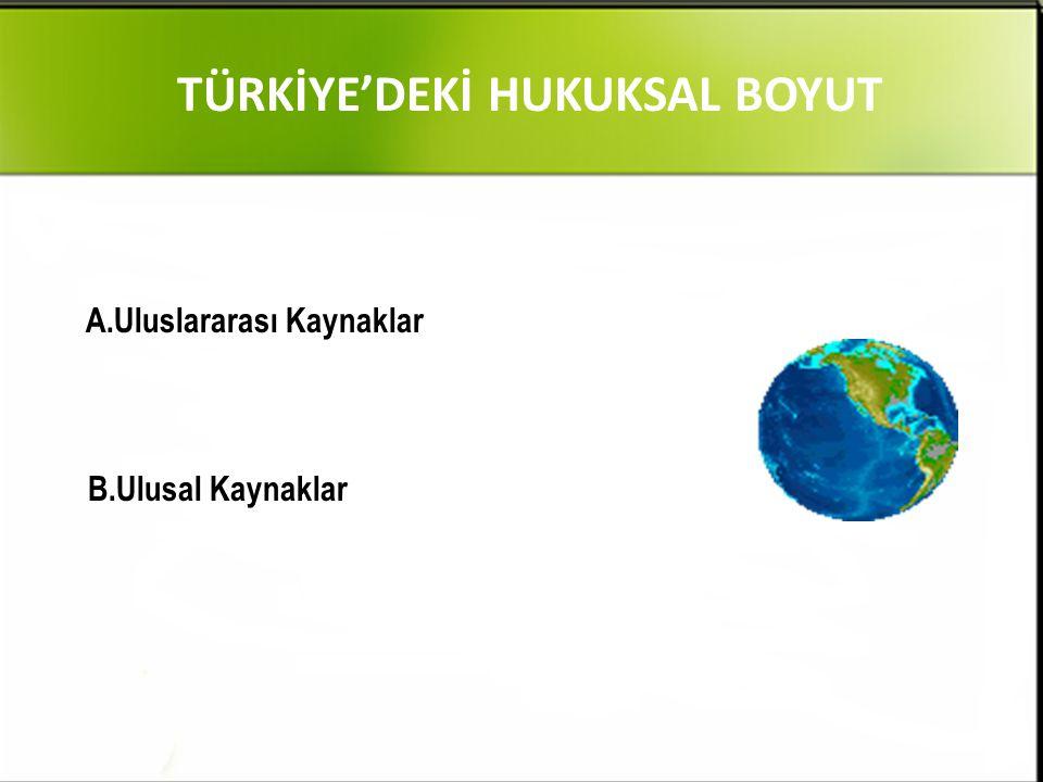 TÜRKİYE'DEKİ HUKUKSAL BOYUT