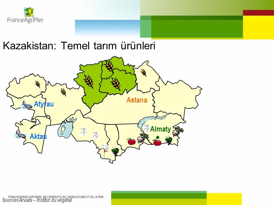Kazakistan: Temel tarım ürünleri