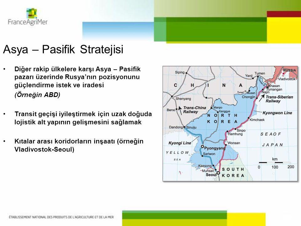 Asya – Pasifik Stratejisi
