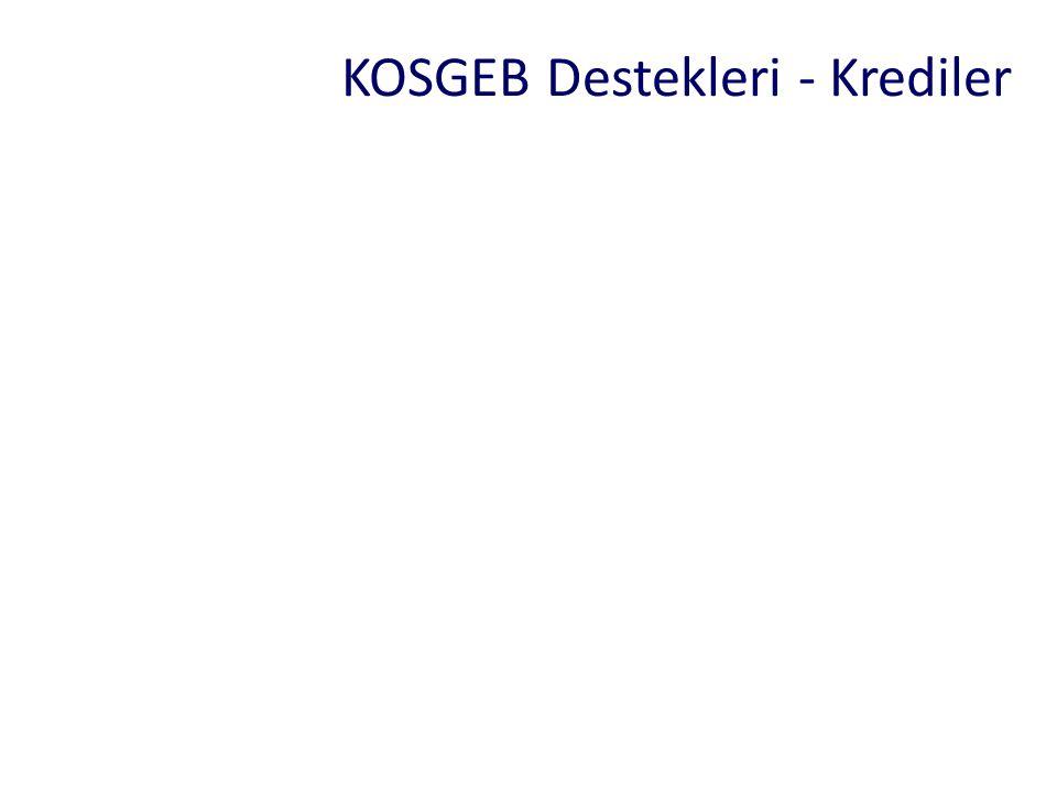 KOSGEB Destekleri - Krediler