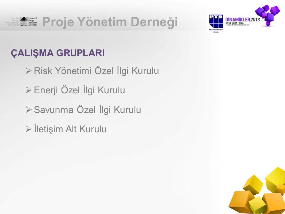Proje Yönetim Derneği ÇALIŞMA GRUPLARI Risk Yönetimi Özel İlgi Kurulu