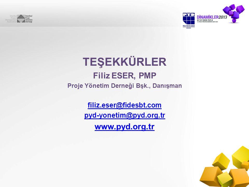 Proje Yönetim Derneği Bşk., Danışman