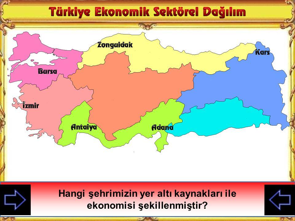 Hangi şehrimizin yer altı kaynakları ile ekonomisi şekillenmiştir