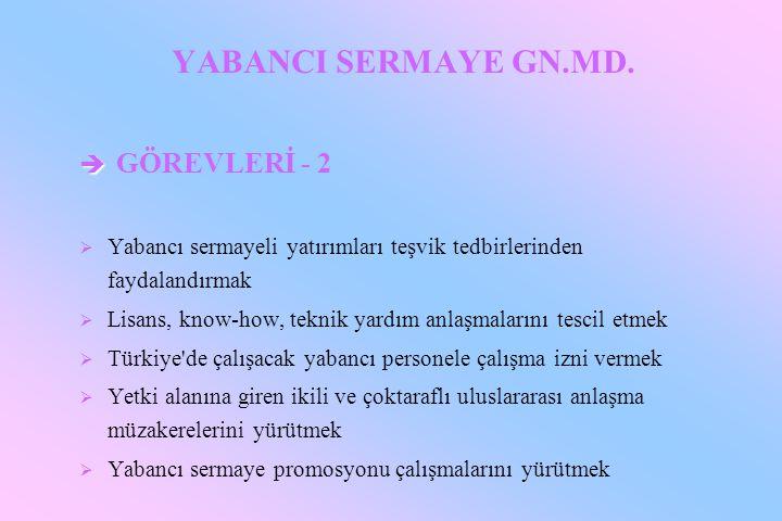 YABANCI SERMAYE GN.MD. GÖREVLERİ - 2