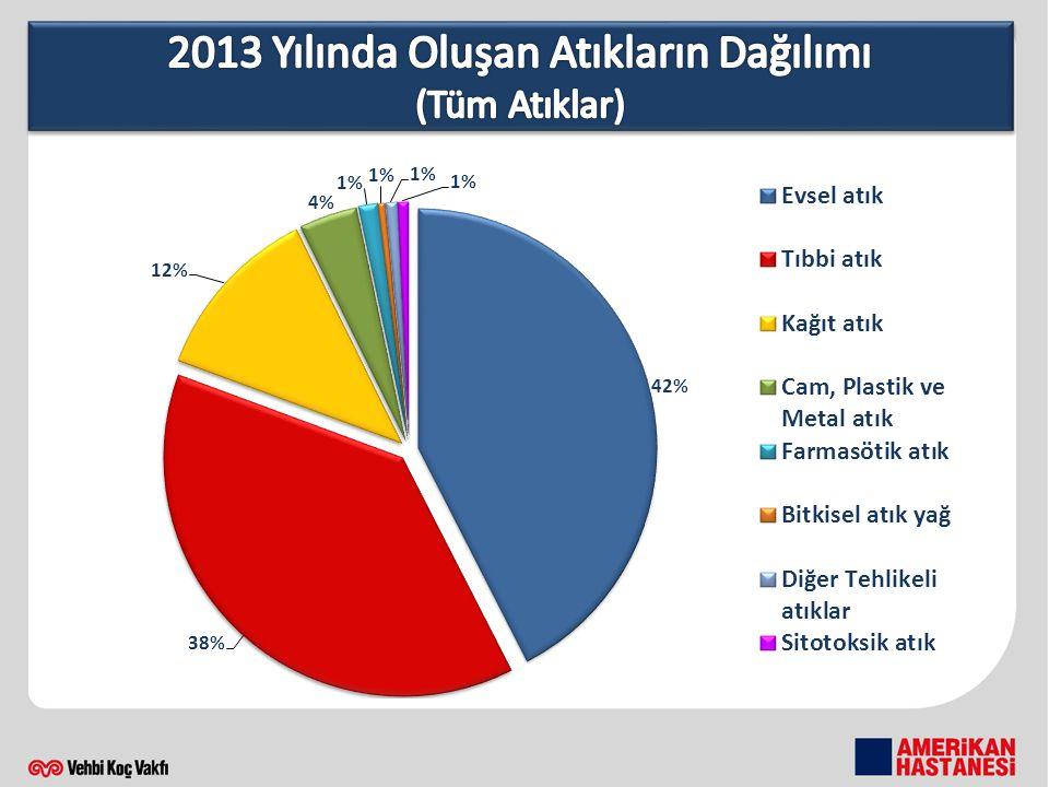 2013 Yılında Oluşan Atıkların Dağılımı (Tüm Atıklar)
