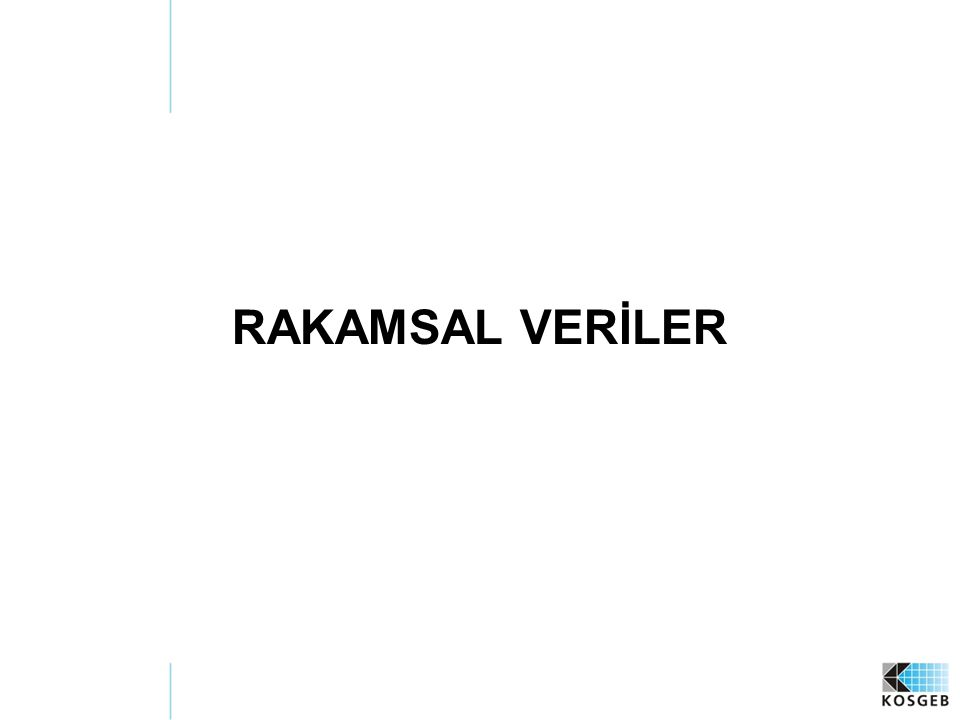 RAKAMSAL VERİLER