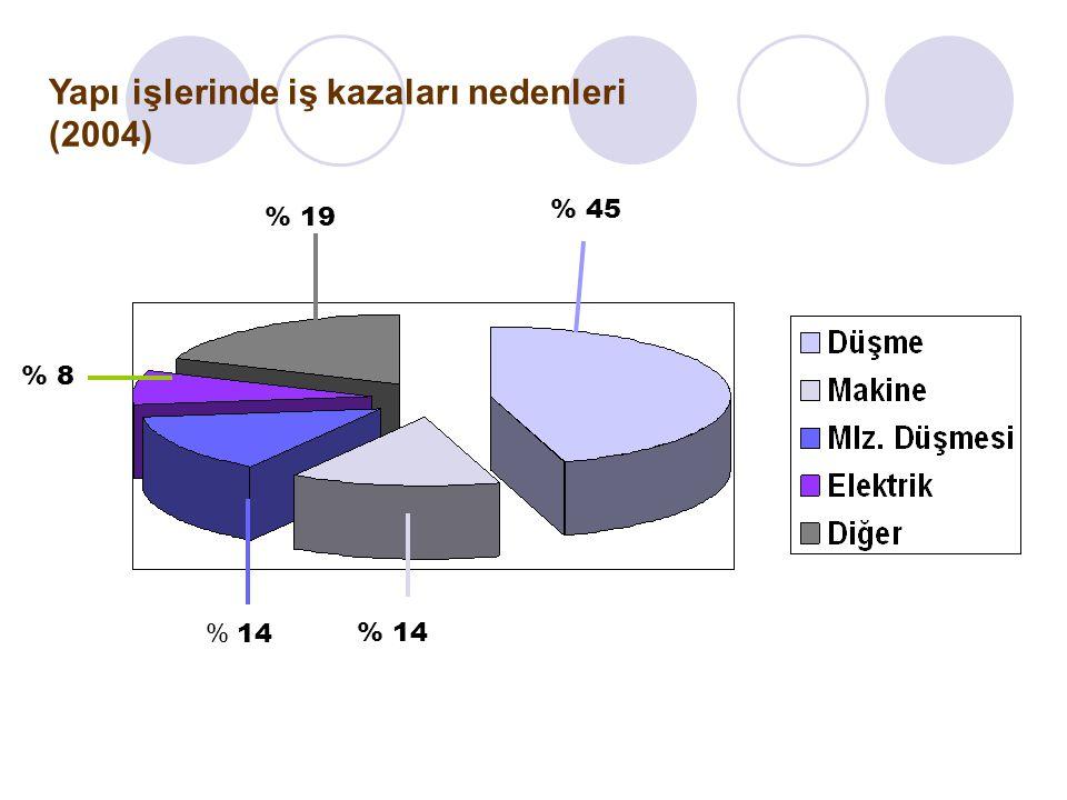 Yapı işlerinde iş kazaları nedenleri (2004)