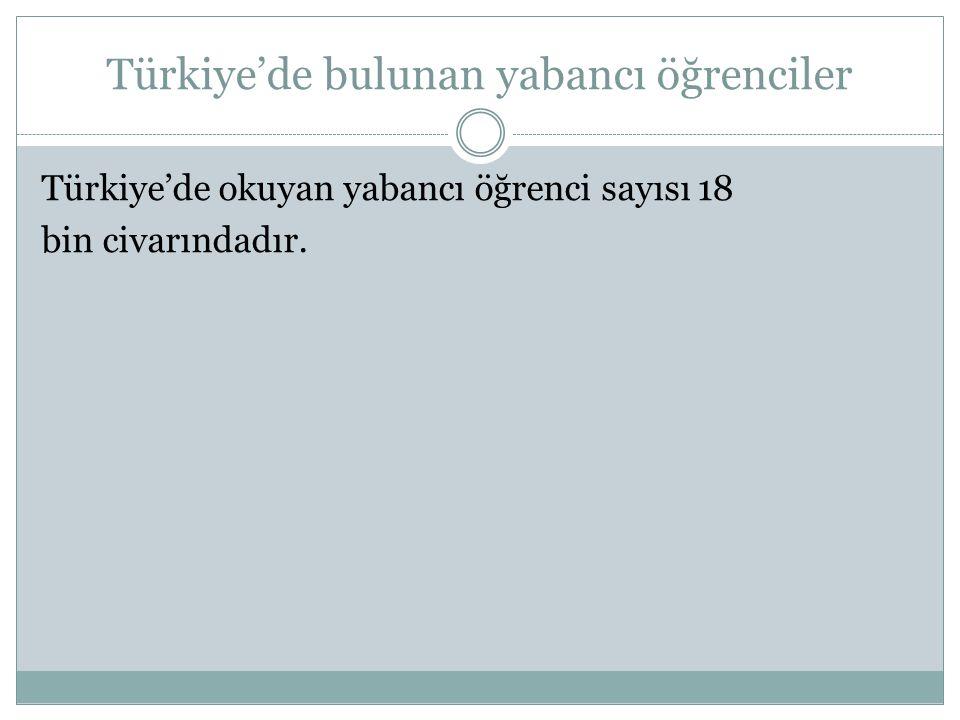 Türkiye'de bulunan yabancı öğrenciler