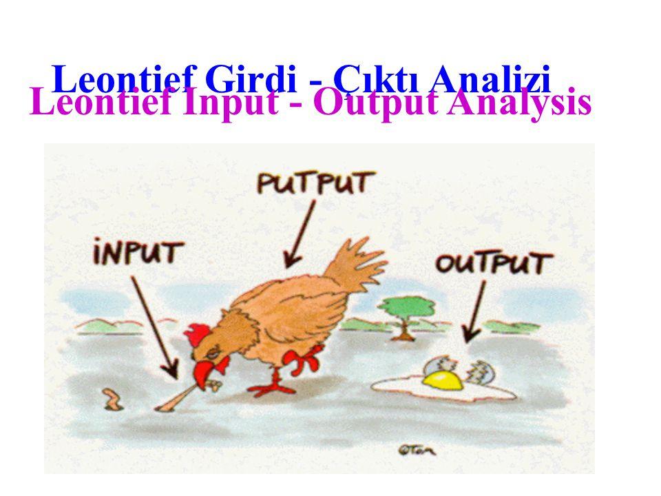Leontief Girdi - Çıktı Analizi