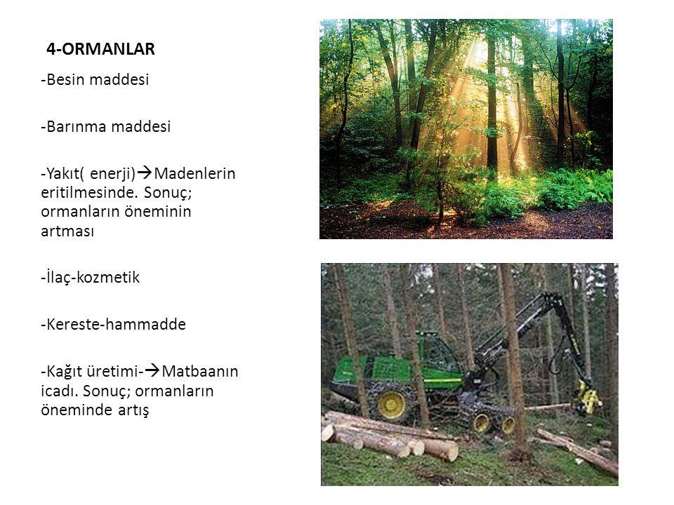 4-ORMANLAR -Besin maddesi -Barınma maddesi