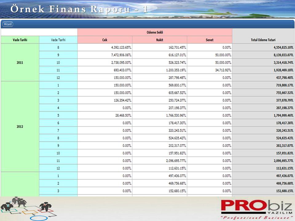 Örnek Finans Raporu - 1