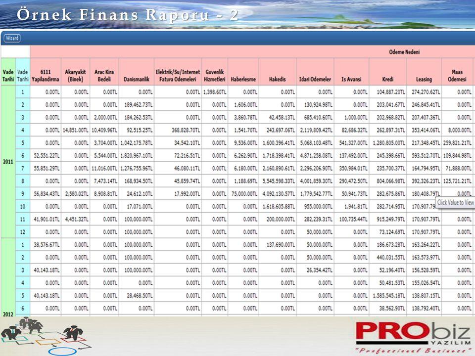 Örnek Finans Raporu - 2