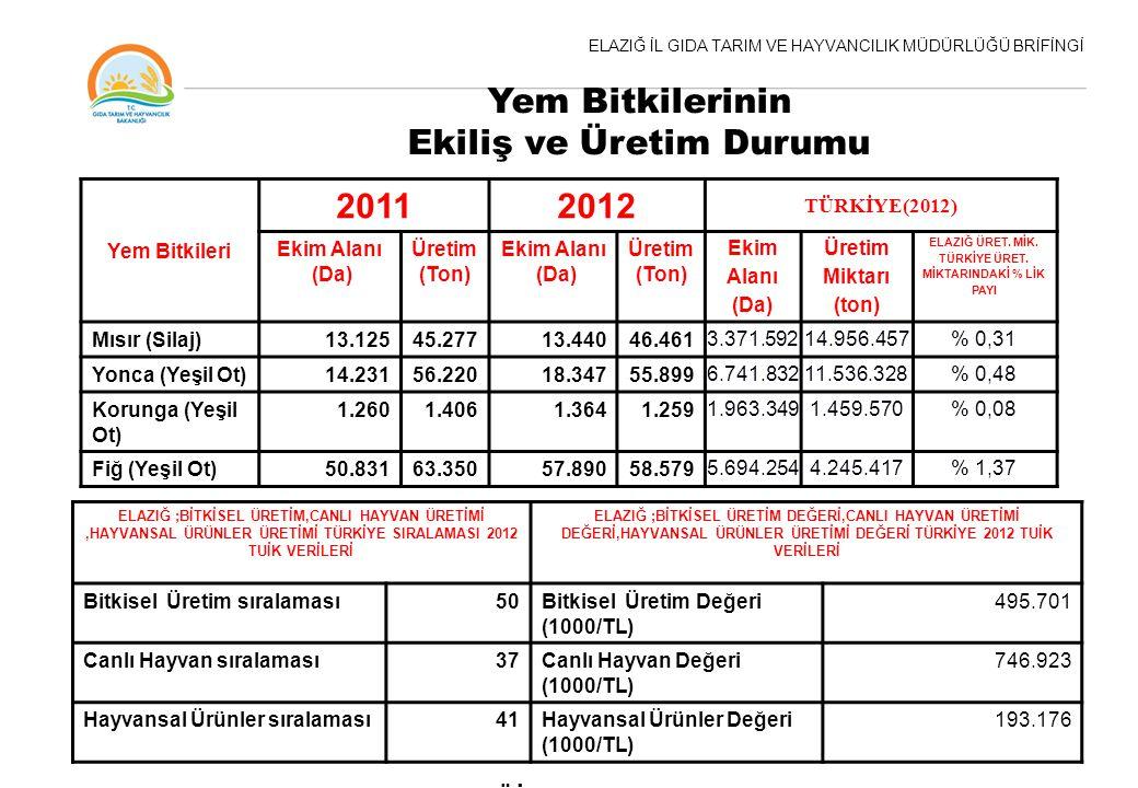 Yem Bitkilerinin Ekiliş ve Üretim Durumu 2011 2012