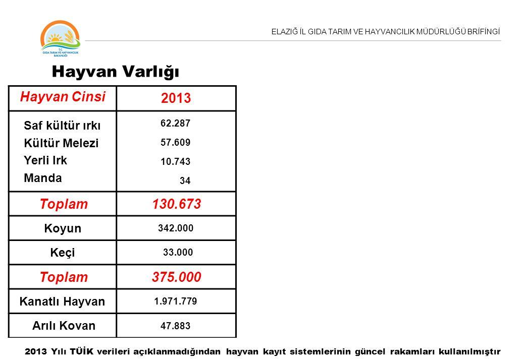 Hayvan Varlığı Hayvan Cinsi 2013 Toplam 130.673 375.000
