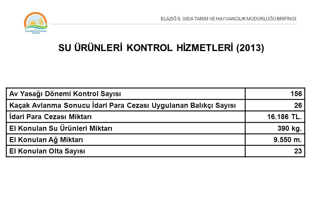SU ÜRÜNLERİ KONTROL HİZMETLERİ (2013)