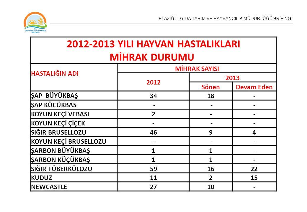 2012-2013 YILI HAYVAN HASTALIKLARI