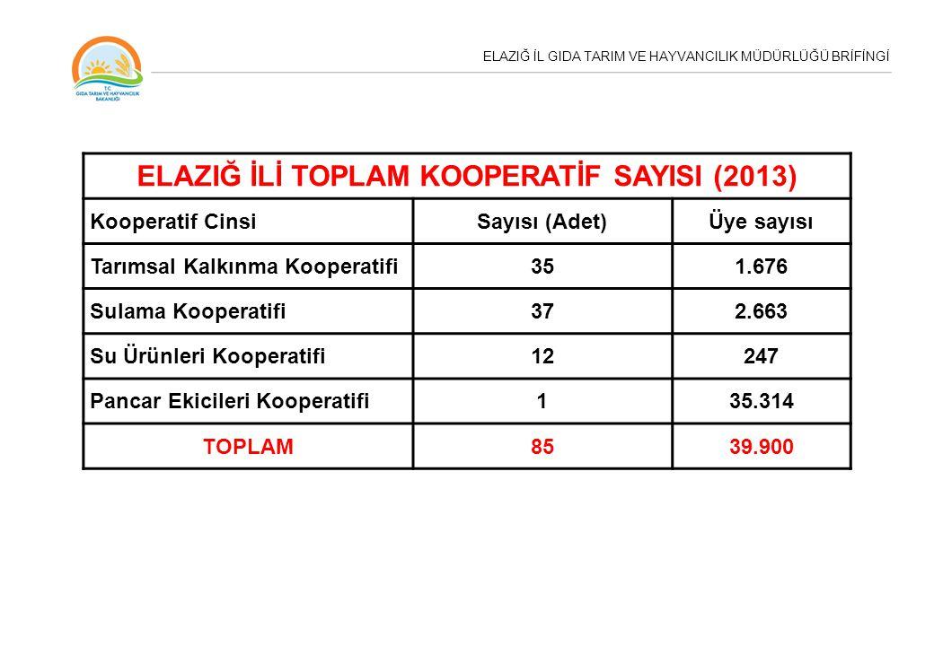 ELAZIĞ İLİ TOPLAM KOOPERATİF SAYISI (2013)