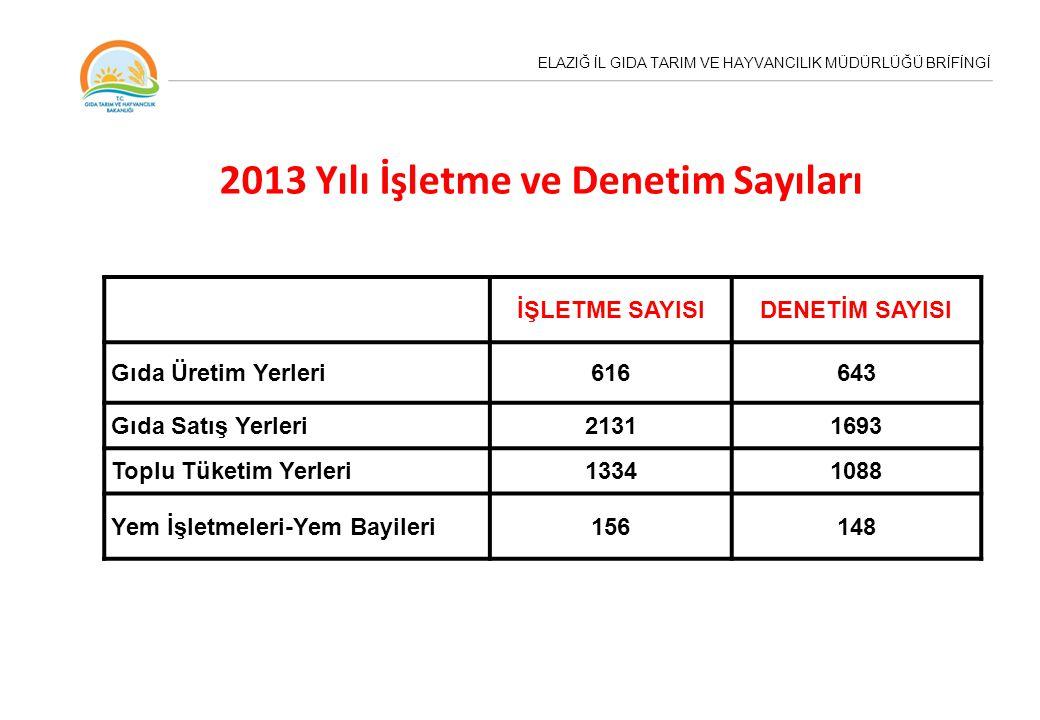 2013 Yılı İşletme ve Denetim Sayıları