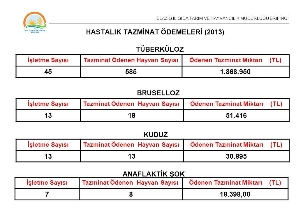 HASTALIK TAZMİNAT ÖDEMELERİ (2013)