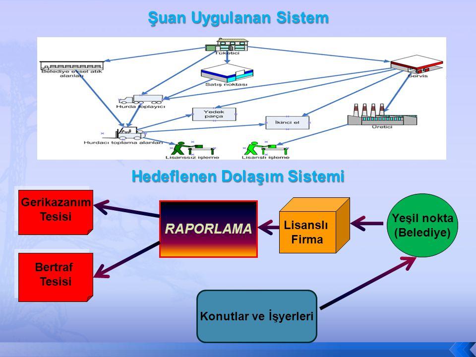 Hedeflenen Dolaşım Sistemi