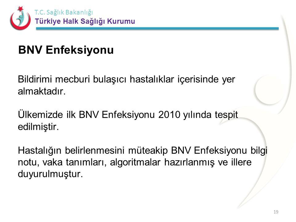 BNV Enfeksiyonu
