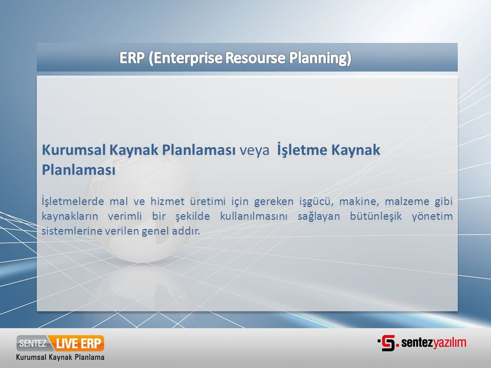 ERP (Enterprise Resourse Planning)