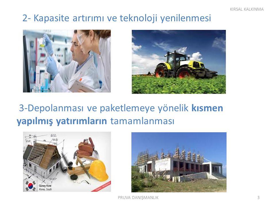 2- Kapasite artırımı ve teknoloji yenilenmesi