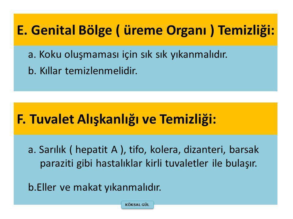 E. Genital Bölge ( üreme Organı ) Temizliği: