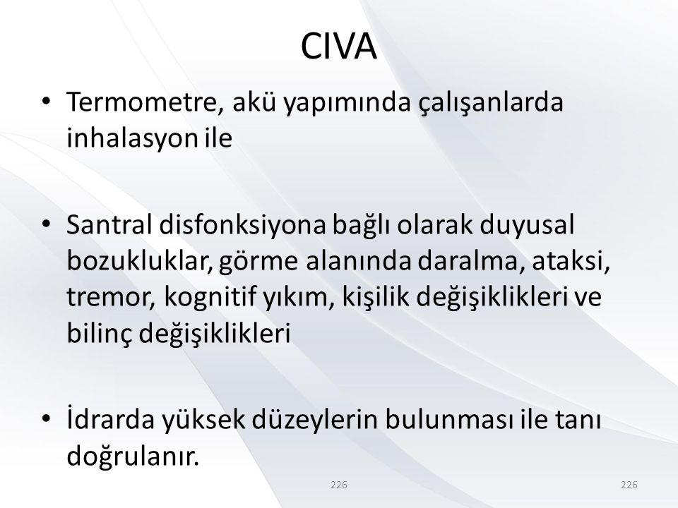 CIVA Termometre, akü yapımında çalışanlarda inhalasyon ile