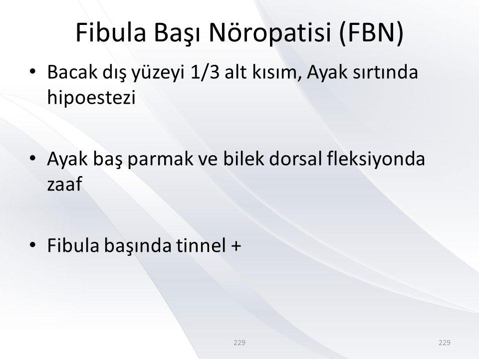 Fibula Başı Nöropatisi (FBN)