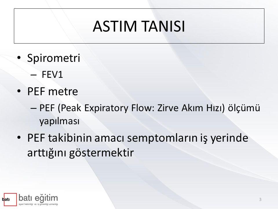 ASTIM TANISI Spirometri PEF metre