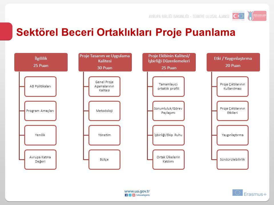 Sektörel Beceri Ortaklıkları Proje Puanlama