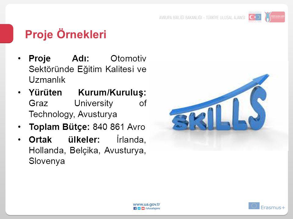 Proje Örnekleri Proje Adı: Otomotiv Sektöründe Eğitim Kalitesi ve Uzmanlık. Yürüten Kurum/Kuruluş: Graz University of Technology, Avusturya.