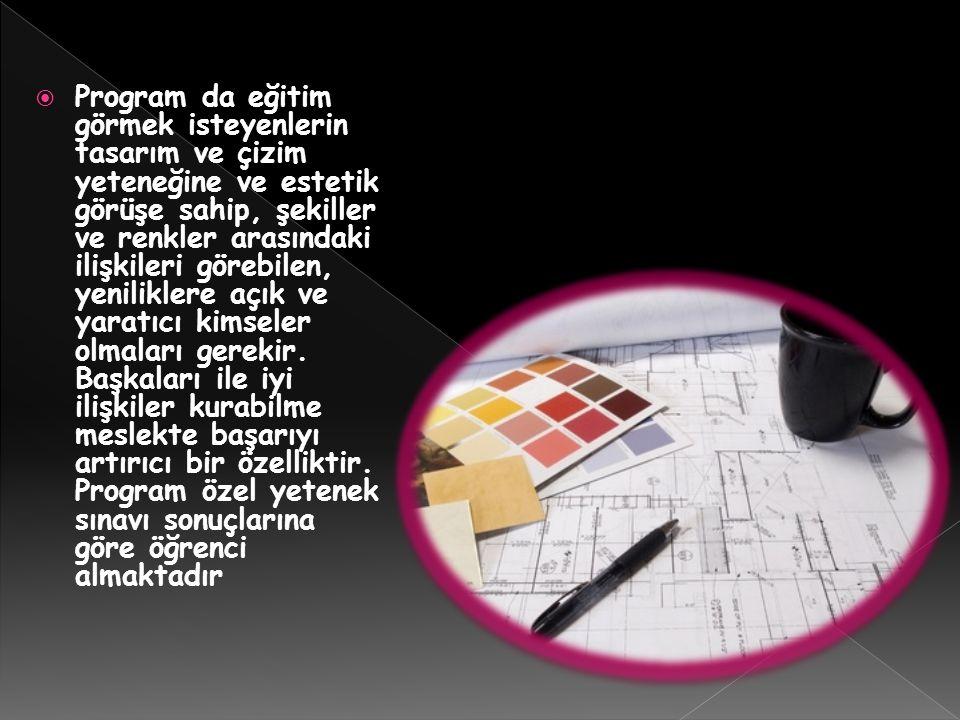 Program da eğitim görmek isteyenlerin tasarım ve çizim yeteneğine ve estetik görüşe sahip, şekiller ve renkler arasındaki ilişkileri görebilen, yeniliklere açık ve yaratıcı kimseler olmaları gerekir.