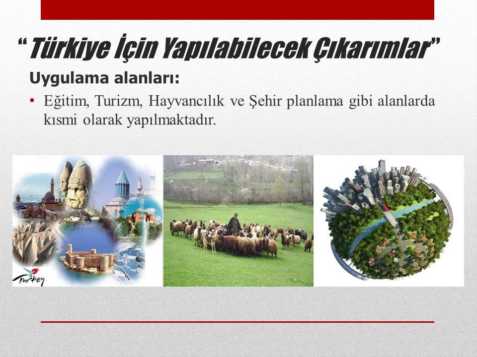 Türkiye İçin Yapılabilecek Çıkarımlar