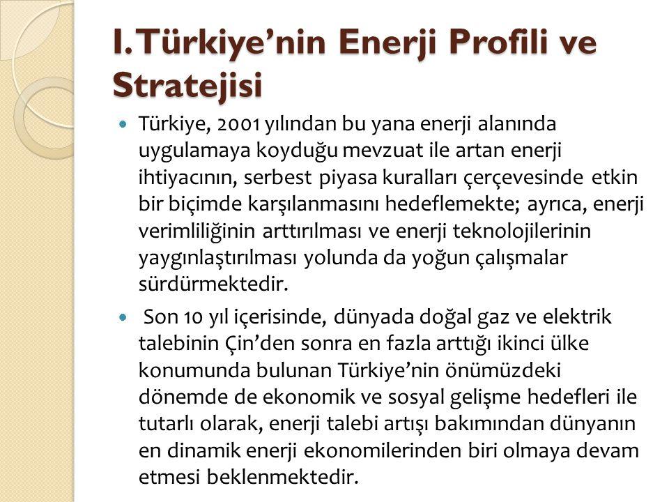 I. Türkiye'nin Enerji Profili ve Stratejisi