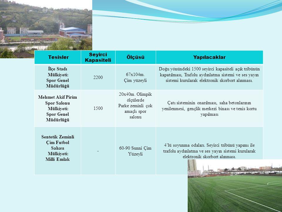 Mehmet Akif Pirim Spor Salonu Sentetik Zeminli Çim Futbol
