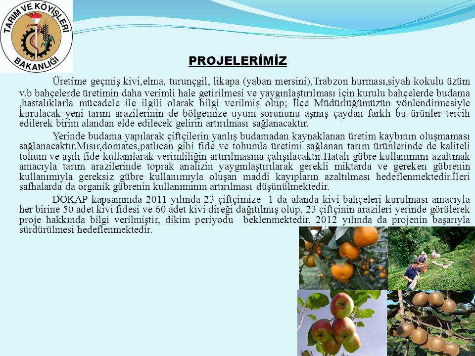 PROJELERİMİZ