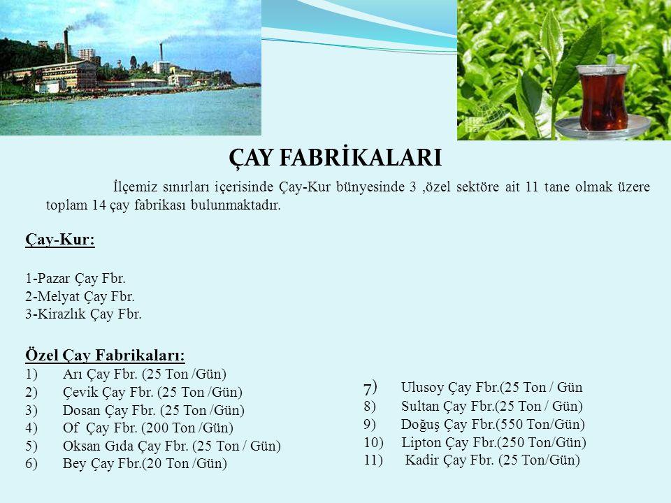 ÇAY FABRİKALARI İlçemiz sınırları içerisinde Çay-Kur bünyesinde 3 ,özel sektöre ait 11 tane olmak üzere toplam 14 çay fabrikası bulunmaktadır.