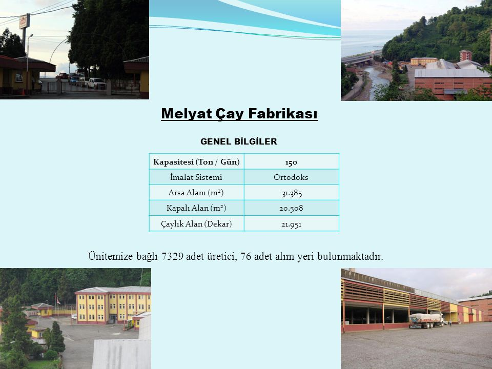 Melyat Çay Fabrikası GENEL BİLGİLER Kapasitesi (Ton / Gün) 150