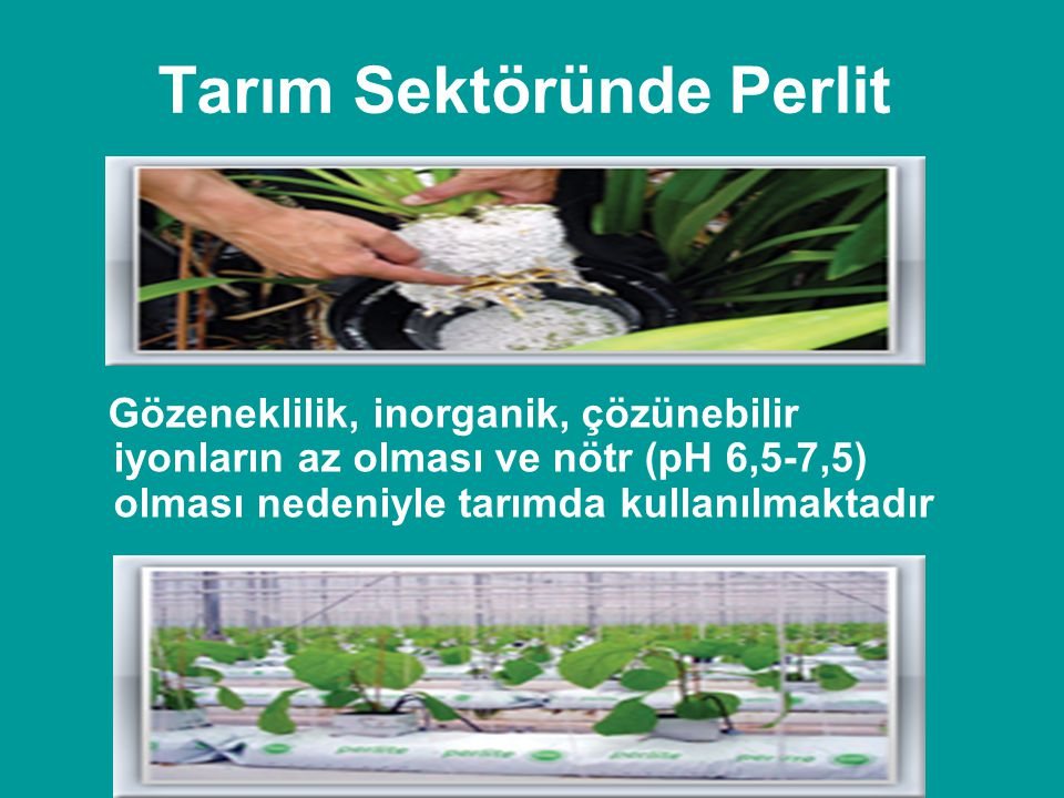 Tarım Sektöründe Perlit