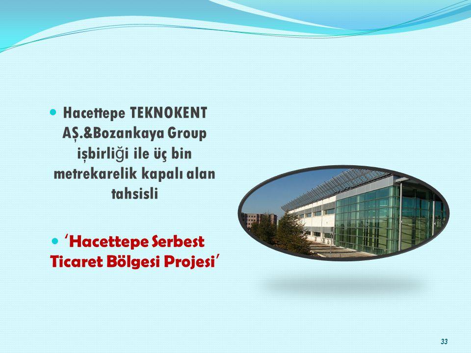 'Hacettepe Serbest Ticaret Bölgesi Projesi'