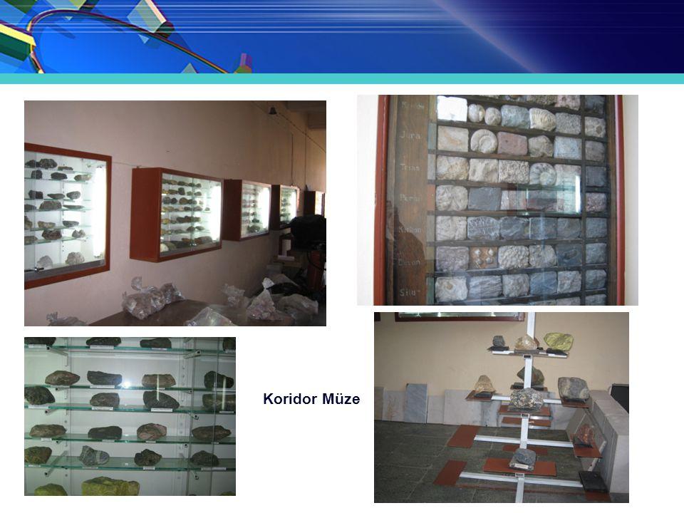 Koridor Müze