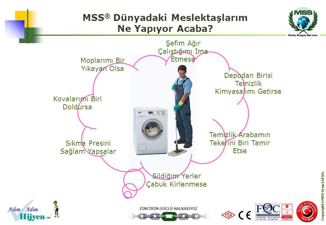 MSS® Dünyadaki Meslektaşlarım Copyright©MSS Grup Ltd Şti.