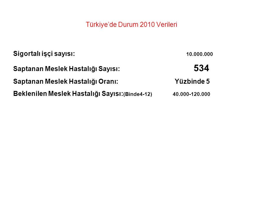 Türkiye'de Durum 2010 Verileri