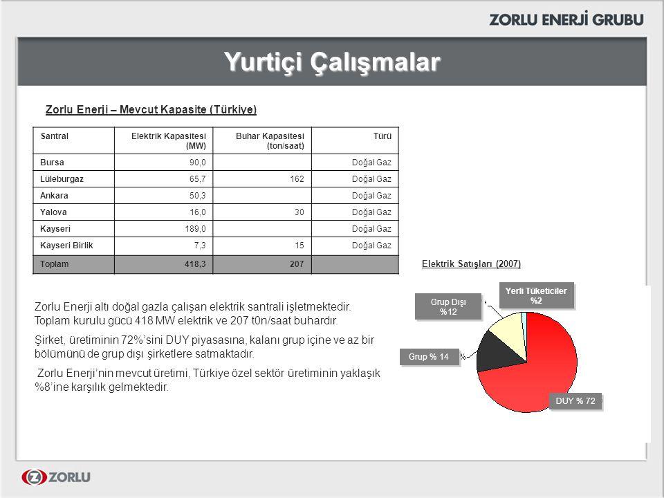 Yurtiçi Çalışmalar Zorlu Enerji – Mevcut Kapasite (Türkiye)