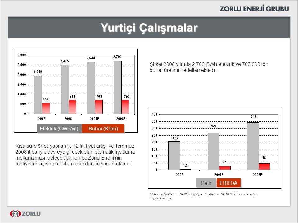 Yurtiçi Çalışmalar Şirket 2008 yılında 2,700 GWh elektrik ve 703,000 ton buhar üretimi hedeflemektedir.
