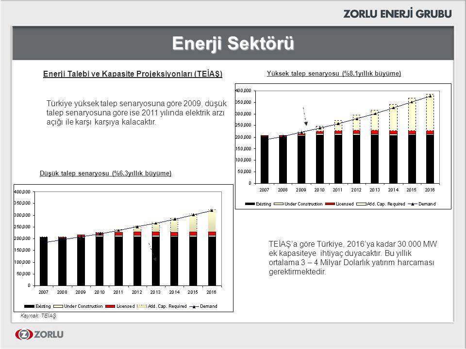 Enerji Sektörü Enerji Talebi ve Kapasite Projeksiyonları (TEİAŞ)