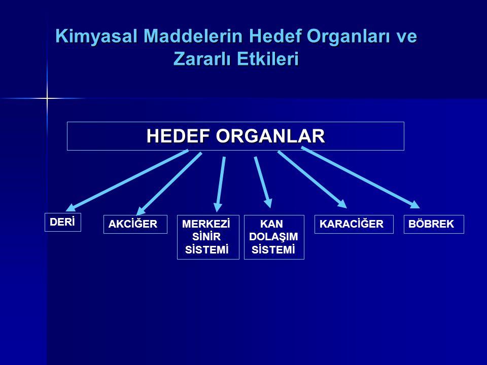 Kimyasal Maddelerin Hedef Organları ve Zararlı Etkileri