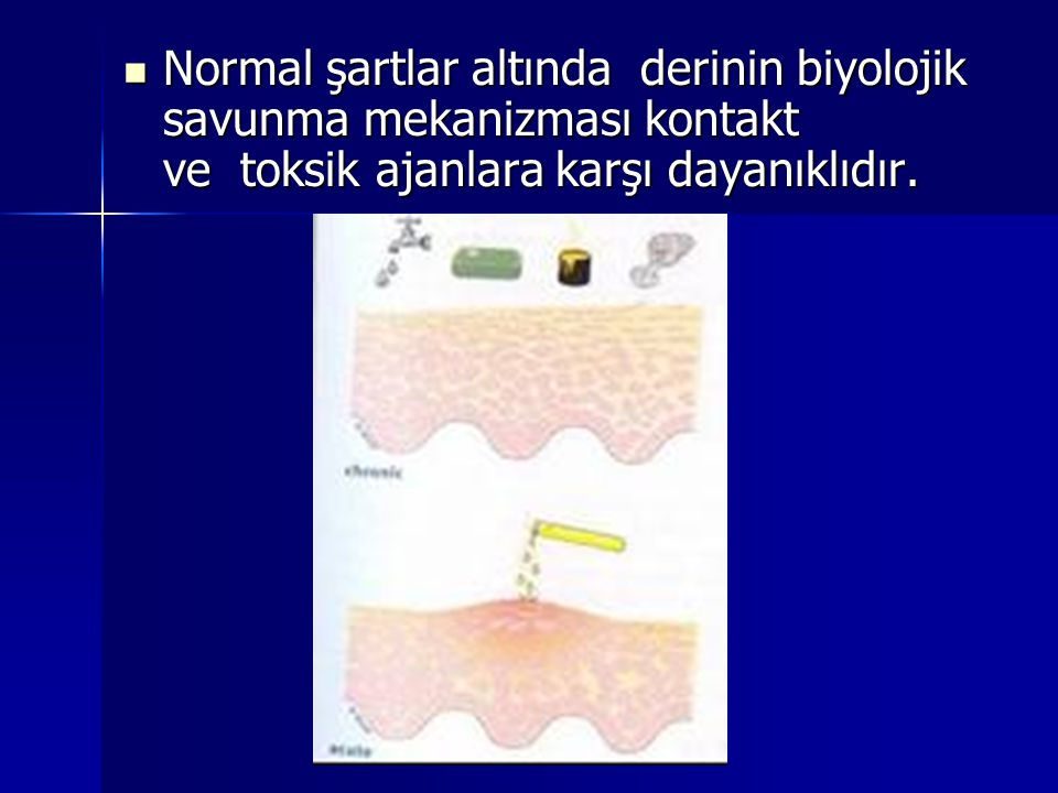 Normal şartlar altında derinin biyolojik savunma mekanizması kontakt ve toksik ajanlara karşı dayanıklıdır.